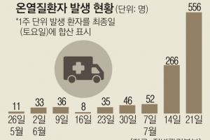 """폭염주의보 알고도…농촌 고령자 28% """"낮시간대 논밭 일"""""""