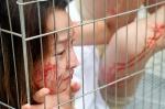 동물보호단체 폭염 속 '철…