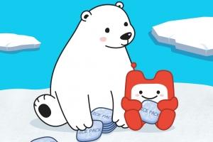 """현대홈쇼핑 아이스팩 무료 수거 나선다 """"북극곰은 얼음팩을 좋아해"""""""