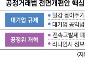 대기업 계열사 24곳 일감 몰아주기 추가 규제