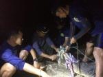 태국 관광지 푸껫 악어 공…