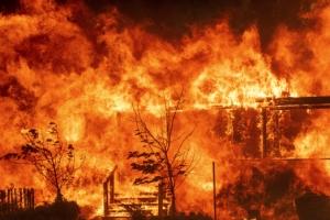 주민 2만명 대피하게 만든 美 캘리포니아 산불 방화범 체포
