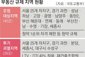 """국토부 """"서울 집값 불안 재현 땐 투기지역 추가 지정 검토"""""""