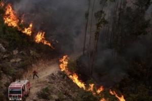 포르투갈 섭씨 46도에 대형 산불, 44도 스페인 곳곳에도 火魔