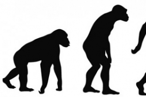 [이한용의 구석기 통신] 현생 인류는  더위에 어떻게 적응해 왔나!