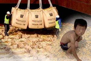 [씨줄날줄] 대북 식량 지원의 적기/황성기 논설위원