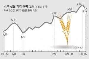 폭염에 전 세계 밀 가격 급등… 농산물 펀드 수익 '풍년'