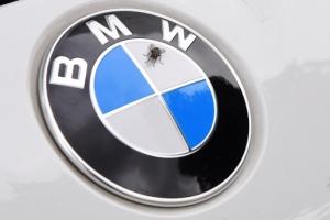 민주당, BMW 차량 화재 사고 '질타'