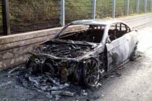 자고 나면 불… BMW 세운다