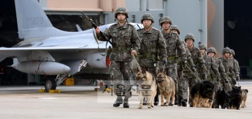 공군 제16전투비행단 군견소대 군견들이 '핸들러'(handler)라고 불리는 취급병과 함께 기지 내 전투기 주기장의 순찰임무를 마치고 부대로 복귀하고 있다.