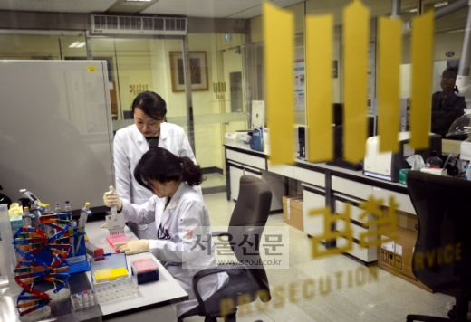 DNA 검사 중  4일 서울 서초구 대검찰청 별관에 있는 국가디지털포렌식센터(NDFC)에서 직원들이 유전자 감식을 하고 있다. 박지환 기자 popocar@seoul.co.kr
