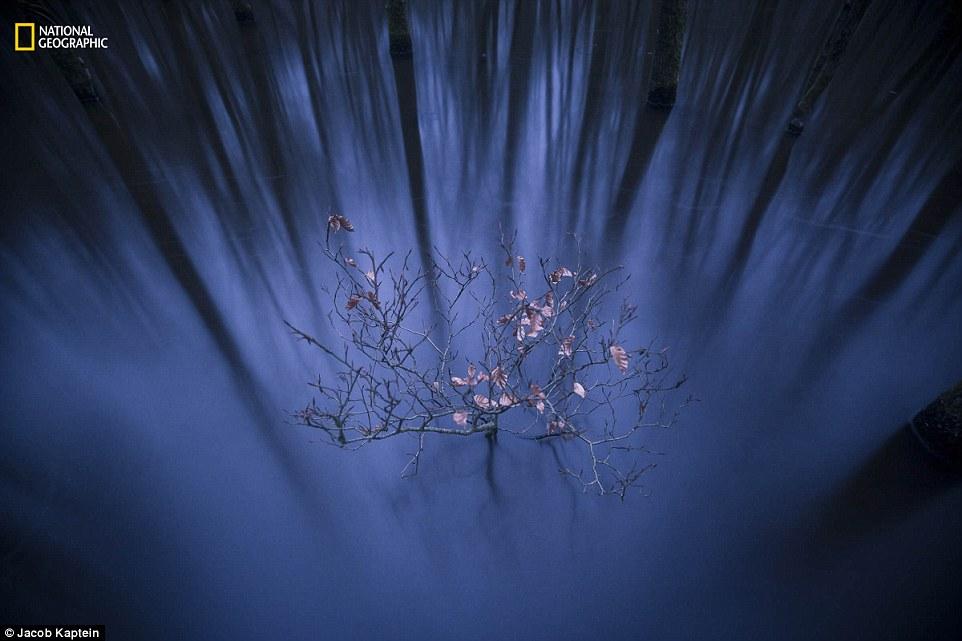 내셔널지오그래픽 선정 '2016 올해의 자연 사진가' 풍경 부문 1등상