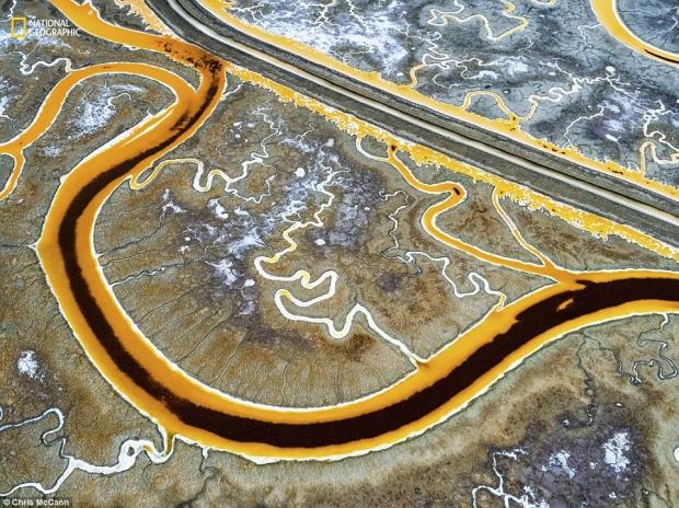 내셔널지오그래픽 선정 '2016 올해의 자연 사진가' 환경문제 부문 2등상