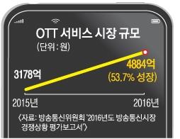 [서울신문] 넷플릭스가 불지핀 '손안의 TV' 주도권 쟁탈전