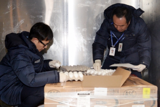 계란이 왔어요~  농림축산식품부 직원들이 12일 인천국제공항에서 아시아나 항공편을 통해 도착한 미국산 계란들의 상태를 확인하고 있다. 이날 도착한 150㎏(2160개)은 본격적인 수입에 앞서 정밀검사를 진행하기 위한 샘플용이다. 박윤슬 기자 seul@seoul.co.kr