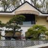 박 전 대통령의 새 집은 연예인 신소미씨가 살던 집