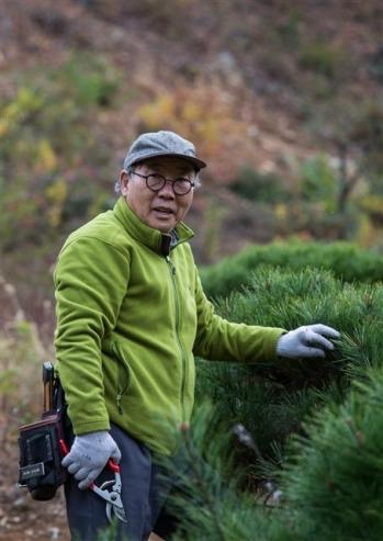 나무를 가꾸고 있는 조상호 나남출판사 회장. 나남출판사 제공