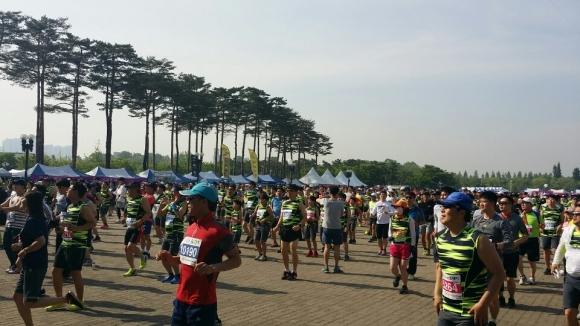 20일 서울 상암동 월드컵경기장에서 열린 제16회 서울신문 하프마라톤 대회에 참가한 마라토너들이 출발에 앞서 몸을 풀고 있다.