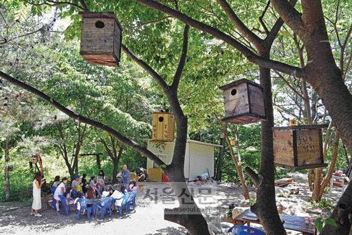 초여름 햇살이 따가운 6월 휴일에 도연암 산새 학교를 방문한 가족들이 시원한 나무 그늘 아래 평상에 앉아 도연 스님이 들려주는 산새 얘기를 듣고 있다.