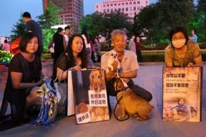 개고기 축제 열리는 중국 위린시에서 도살 직전 개 68마리 구출