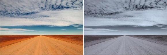 정신적으로 건강한 사람이 올린 왼쪽 사진에 비해 우울증을 겪는 사람이 올린 오른쪽 사진은 청색감이 강하고 채도와 명도가 모두 낮다. 출처 버몬트대학 연구팀