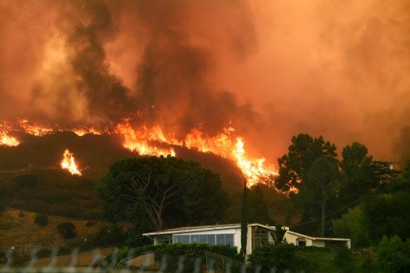 주택까지 삼킬 듯… LA 역대 최대 규모 산불  미국 캘리포니아 로스앤젤레스(LA) 외곽 라투나 계곡에서 발생한 산불이 2일(현지시간) 인근 섀도힐 지역의 야산을 뒤덮고 있다. LA 소방당국은 지난 1일 시작된 산불이 8000에이커(약 32.37㎢) 이상으로 확산돼 인근 주민들에게 대피령을 내렸다고 밝혔다. 이 산불은 LA 역사상 최대 규모의 산불로 확인됐다. 로스앤젤레스 AFP 연합뉴스
