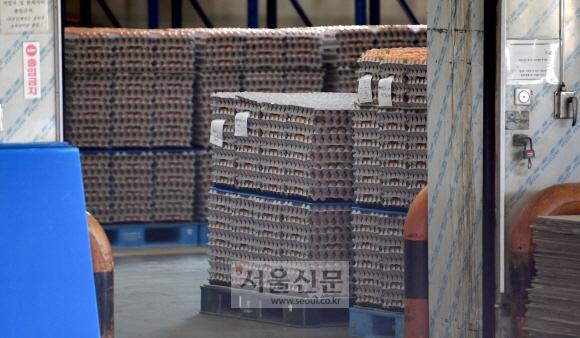 14일 경기도 광주 한국양계농협 계란유통센터의 창고에 판매가 되지 못해 쌓여 있는 계란들로 가득하다. 박지환기자 popocar@seoul.co.kr