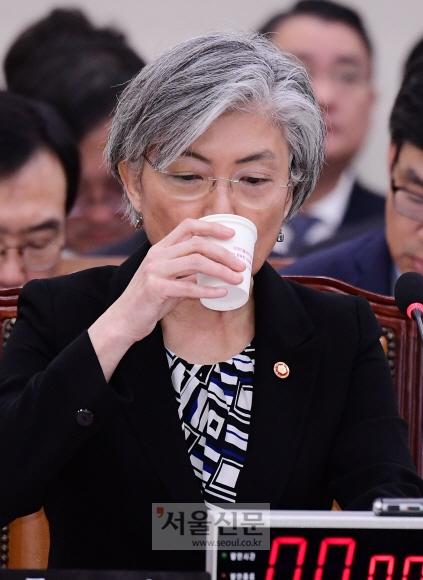 강경화 외교부 장관이 12일 국회에서 열린 외교통일위원회 외교부 국정감사에서 답변 도중 물을 마시고 있다. 이종원 선임기자 jongwon@seoul.co.kr