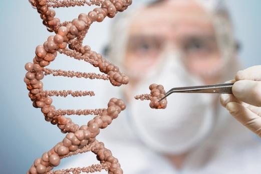 유전자 치료방법 중 유전자 가위기술은 가장 주목받고 있는 혁신 기술 중 하나다. 유전자 가위가 특정 염기서열을 갖는 DNA를 자르면 생체 특유의 유전자 수복 기능에 의해 다시 연결된다. 이러한 절단-수복 과정을 통해 특정 유전자의 선택적인 파괴나 제거가 가능하다. 이런 과정 중에 원하는 DNA나 한 가닥의 소수 염기서열을 투입하면 특정 유전자의 삽입, 편집이 가능해진다. 미국 UC버클리/MIT 제공
