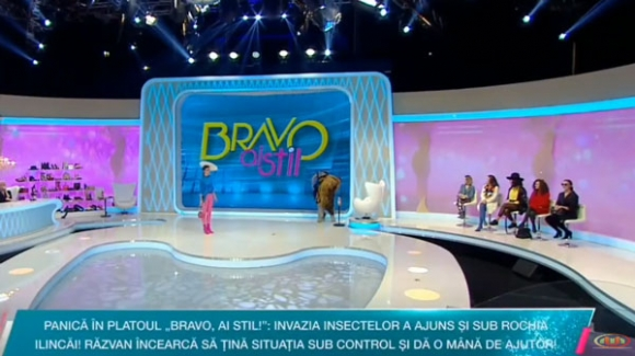 Bravo ai Stil! , Universal Media Online youtube