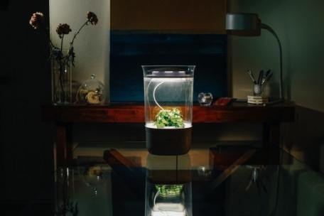 LED 조명 및 급수 시설 등, 실내 인테리어 소품으로도 적합한 '블룸엔진'