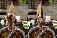 기상천외한 중국의 살아 움직이는 철갑상어 요리