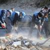 전국에서 보내온 온정…포항 지진 피해 성금 60억 넘어