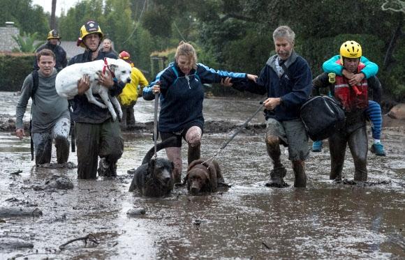 엎친 데 덮친 캘리포니아…산불 났던 곳 산사태로 최소 13명 숨져 9일(현지시간) 산불피해 지역인 미국 캘리포니아주 로스앤젤레스 북서쪽 몬테시토에서 이틀 연속 몰아친 폭풍우로 산사태가 발생하자 주민들이 애완견과 함께 진흙탕을 헤치며 대피하고 있다. 흙과 잿더미, 나뭇가지 등을 몰고 온 이번 산사태로 최소 13명이 숨지고 25명이 다쳤다. 이 일대 주민 3만여명에게는 대피령이 내려졌다. 몬테시토 AFP 연합뉴스