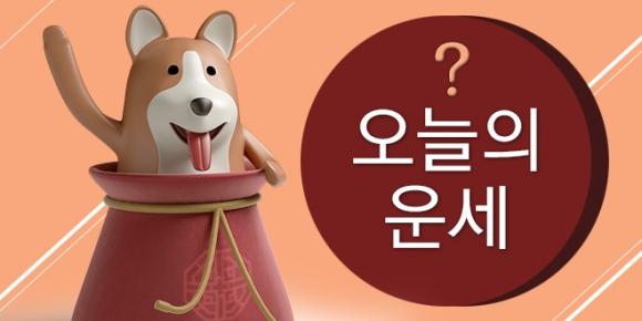 김동완의 오늘의 운세