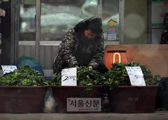 따뜻한 설을 기다리며 서울 동대문구 경동시장에서 한 상인이 손님을 기다리며 나물을 다듬고 있다. 계속되는 한파와 내수 경기침체로 전통시장을 찾는 발길이 많이 줄었다고 한다. 설을 앞둔 서민의 삶은 더 고달프기만 하다. 박윤슬 기자 seul@seoul.co.kr