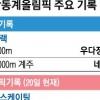 WR 3개ㆍOR 25개…평창 '신기록 풍년'