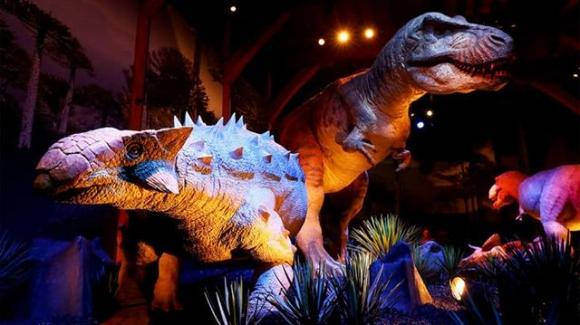 안킬로사우르스(왼쪽)는 온몸이 갑옷으로 덮여 있고 꼬리는 딱딱한 곤봉처럼 돼 있어서 티라노사우르스(오른쪽) 같은 육식공룡이 공격할 경우 몸을 웅크리고 있다가 꼬리를 흔들어 퇴치했을 것으로 추정되고 있다.  네이처 제공