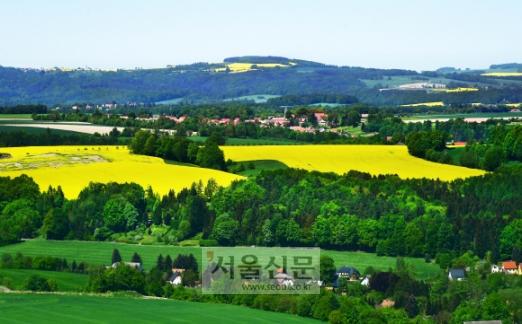 국경 인근의 시골마을 풍경. 대부분의 지역에서 유채꽃이 절정에 이른 장면과 마주할 수 있다.