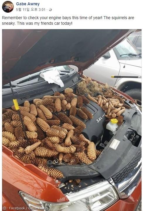 게이브 아워리가 페이스북에 올린 친구의 차 사진.