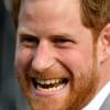 해리 왕자 결혼식 앞두고 엘리자베스 여왕에 공작 작위 받아
