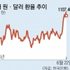 3고·신흥국 6월 위기설… '셀코리아' 우려 커진다