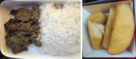 4일 아시아나항공직원연대가 오픈 채팅방에 공개한 기내식. 밥과 고기만 있는 도시락(왼쪽)이나 갈변된 사과 등이 승객들에게 제공됐다. 아시아나항공직원연대 제공
