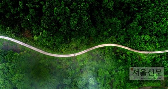 충북 제천시 청풍면 충주호 인근 마을인 만지리를 통과하는 자전거길 사이로 물안개가 드리워져 있다. 충주호 자전거길은 충주호를 끼고 있어 자연을 함께 즐길 수 있는 코스로 널리 알려져 있으며 자전거 여행객들이 자주 찾는 곳 중 하나다.