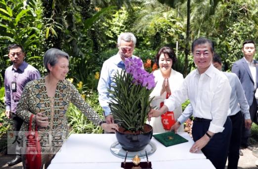 문재인·김정숙 蘭의 자태  싱가포르를 국빈 방문 중인 문재인 대통령이 12일 싱가포르 국립식물원 난초 정원에서 '문재인·김정숙 난'을 손으로 만지고 있다. 싱가포르 정부는 귀빈 환대의 의미로 새로 배양한 난초에 귀빈의 이름을 붙이는 난초 명명식을 연다. 왼쪽부터 리셴룽 총리의 부인 호칭, 리 총리, 김정숙 여사, 문 대통령.  싱가포르 도준석 기자 pado@seoul.co.kr