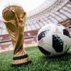 [명경재의 DNA 세계] 월드컵과 생물학 혁명