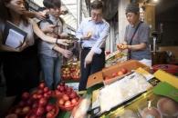 치솟는 채소·과일값… 추석 민생대책 새달 초 발표