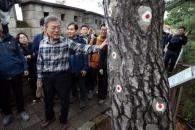 [포토] '1·21 사태' 소나무 설명하는 문 대통령