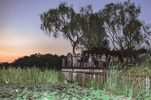 콘크리트 그릇에서 자라고 있는 습지식물을 관찰할 수 있는 선유도공원 수생식물원. 옛 정수장 여과지의 대변신이다. 물을 저장하는 콘크리트와 물과 식물의 합작품이다.