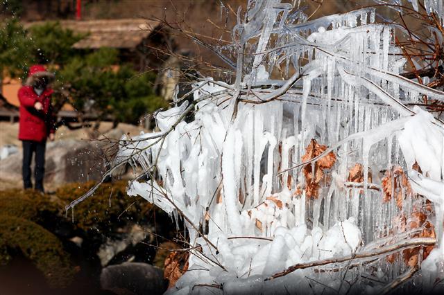 강추위에 대관령 얼음 꽁꽁